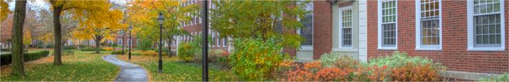 Sullivan Law School Consulting Services Blog